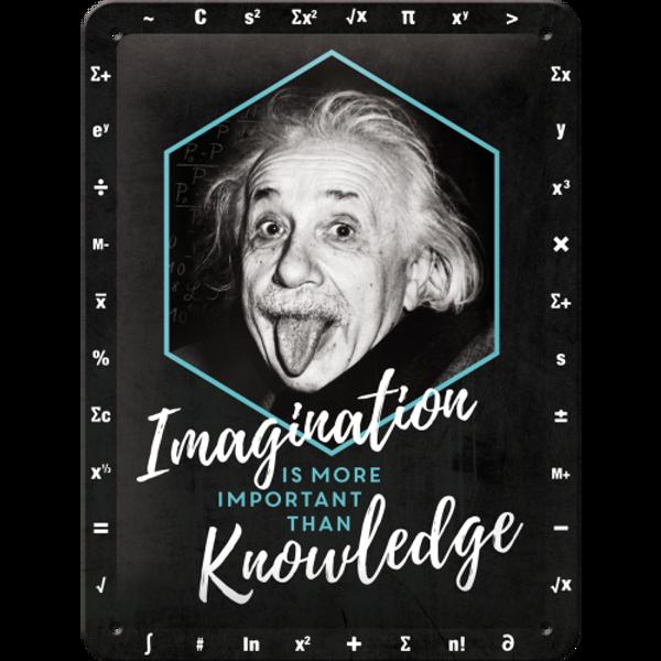 Bilde av Einstein Imagination & Knowledge